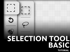 Selection Tool Basics