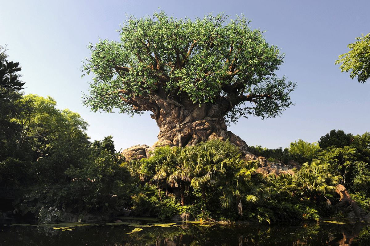Disney Animal Kingdom - The Tree of Life